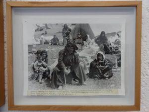 نمایشگاه اقلیم حیرانی محمد صیاد